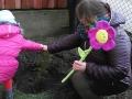 kwiatowy korowód 2017-03-21 (46)