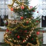 20161206 164215 150x150 - Mikołajkowy kiermasz. Fantazje na Boże Narodzenie