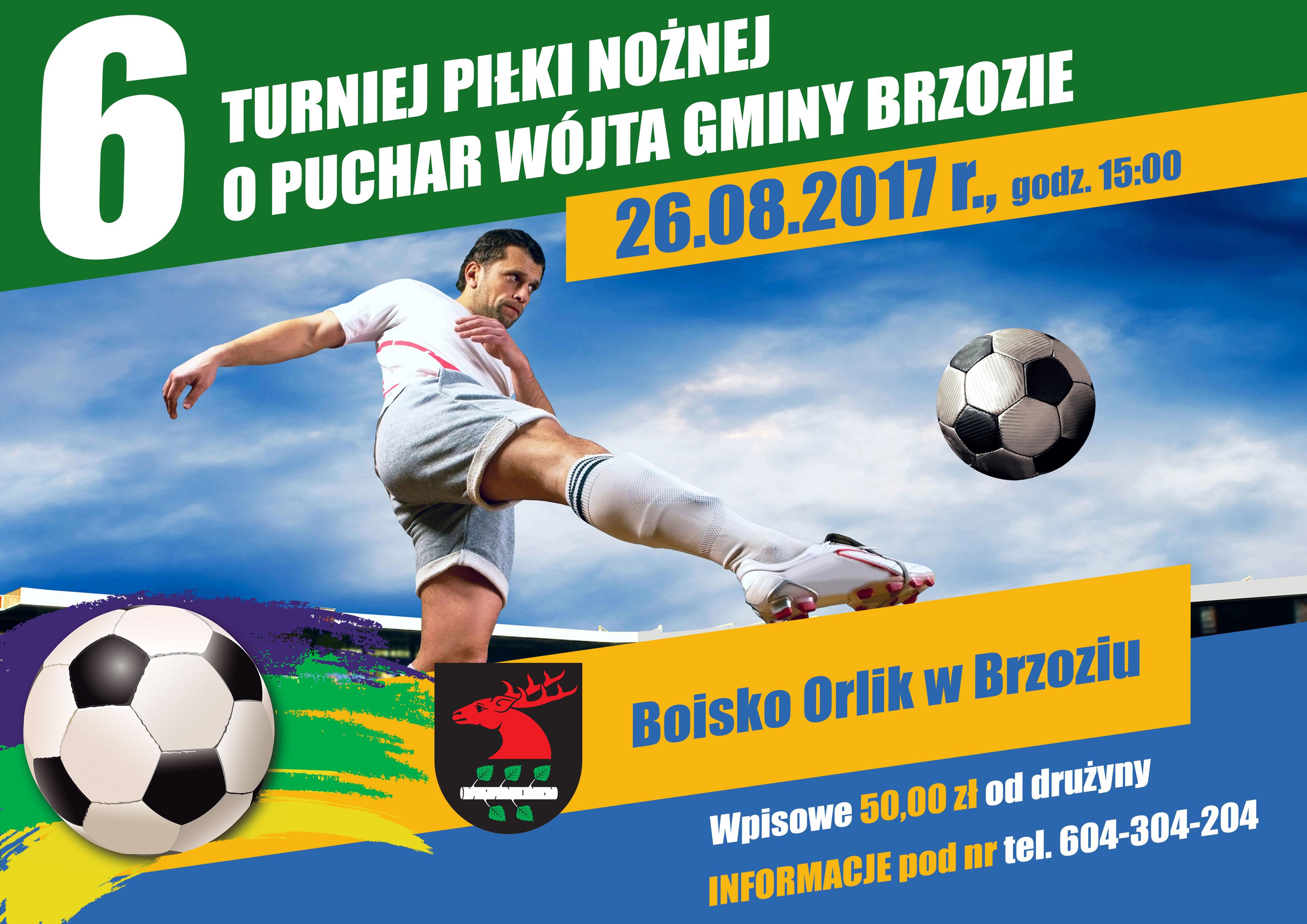 VI Turniej Piłki Nożnej o Puchar Wójta Gminy Brzozie - plakat