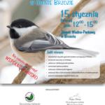 Ptasia akademia - plakat