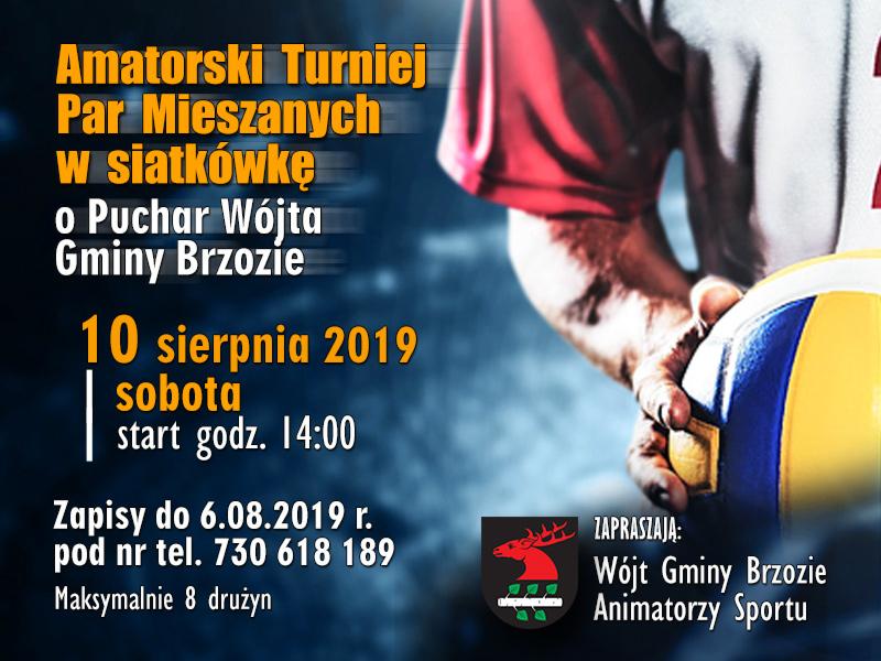 Amatorski Turniej Par Mieszanych w siatkówkę o Puchar Wójta Gminy Brzozie - 10.08..2019, godz. 14:00 - ORLIK