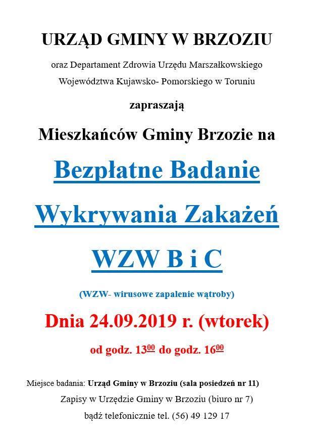 Plakat - badanie WZW