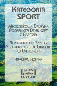 nominacje 20 sport 200x300 - Gala Talentów Gminy Brzozie