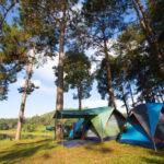 kolonie letnie - namiot w lesie