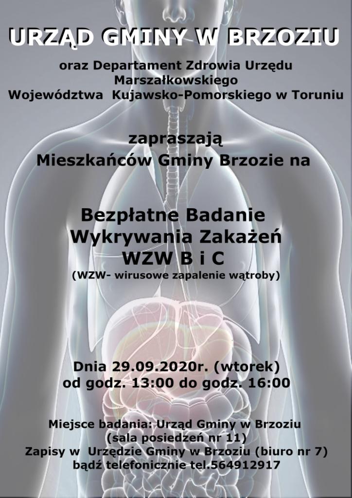 Badania wzw plakat 724x1024 - Bezpłatne badanie wykrywania zakażeń WZW B i C