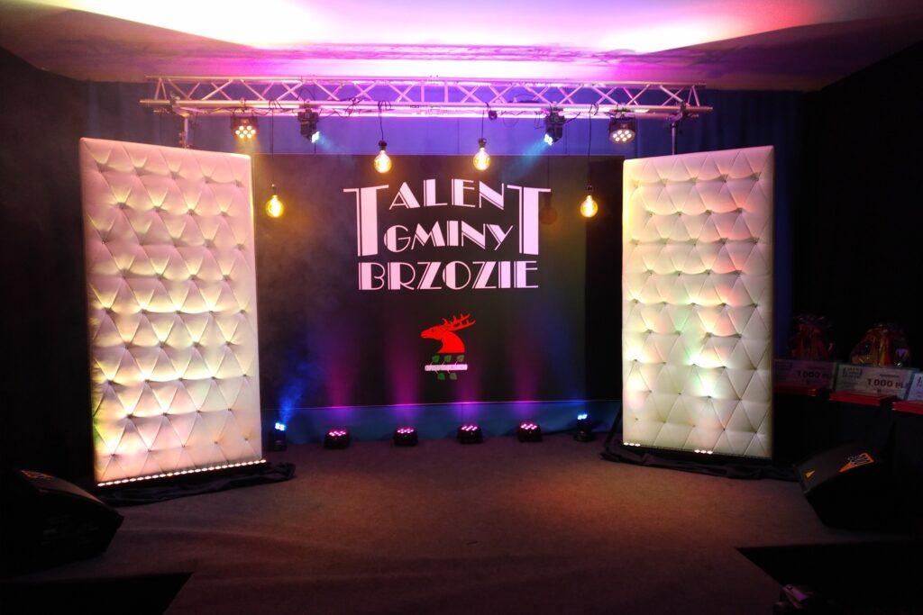 IMG 20201105 2222314 1024x683 - Gala Talentów Gminy Brzozie - II edycja!